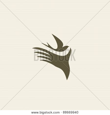 Silhouette swallow in human hands