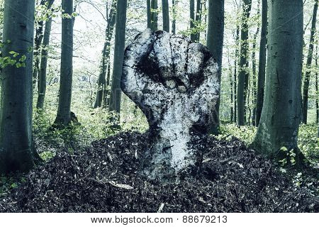 Dirty Fist Raising Up Over The Soil In Front Of Forest