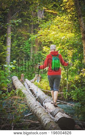 Woman Hiker With Sticks Walking In Forest. Tourism Concept