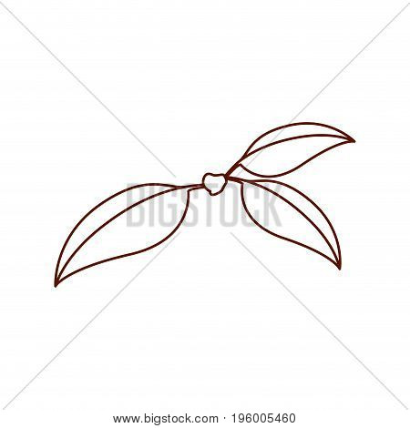 monochrome silhouette of three leaves of cherry with stem vector illustration