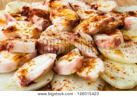 Pulpo a la gallega. Galician octopus isolated on white background. Typical spanish food
