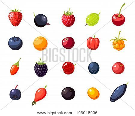 Set single berries: cherry rosehip strawberry acai raspberry juniper cranberry cloudberry blueberry goji acerola blackberry currant honeysuckle. Vector collection of flat icon isolated.
