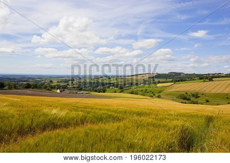 Yorkshire Wolds Vista