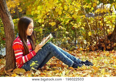 girl sitting on fallen leaves in autumn near a tree in the park and reading a book. learning and education