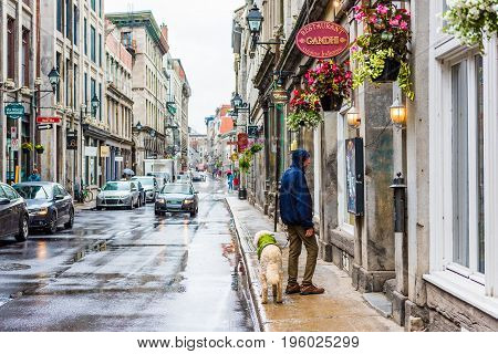 Montreal Canada - May 26 2017: Man with dog reading restaurant Gandhi menu in old town city street in Quebec region during rainy cloudy wet day
