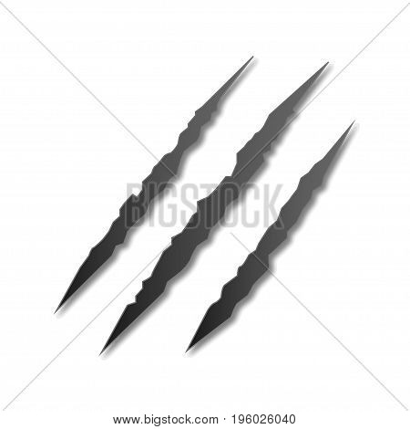 Claw marks on a white isolated background