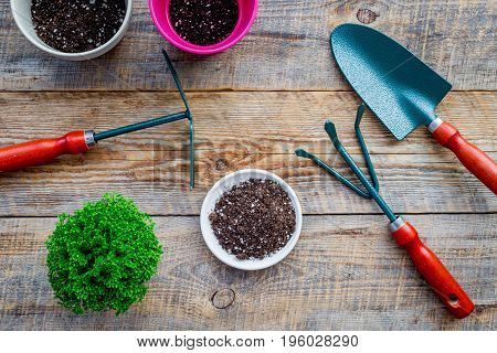 To plant flowers. Gardening tools and pots with soil on wooden background top view.
