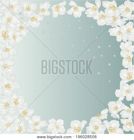 Frame spring blue background with blossoms jasmine and dewdrops vintage vector botanical illustration editable hand draw