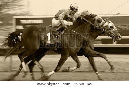 carrera de caballos en negro & blanco