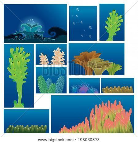 underwater plants and corals - vector illustration set