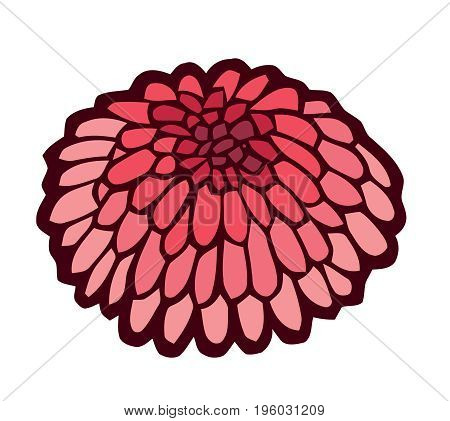 red sea urchin - stylized vector illustration