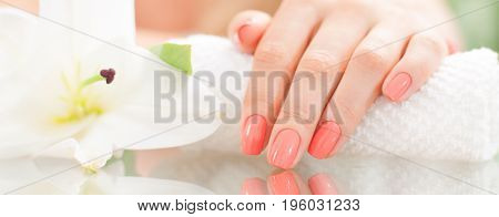 Manicure Concept. Beautiful Woman's Hand With Perfect Manicure At  Beauty Salon.
