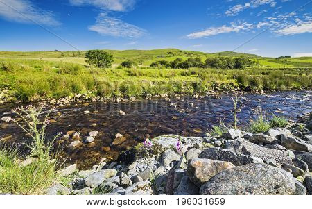 Shallow River Across Green Grazing Hills of Snowdonia in Wales