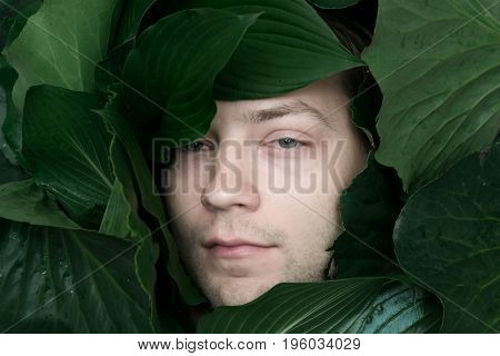 portrait of young handsome guy with bristle in wild green tropical leaves. environment or eco-friendly concept. vintage toning