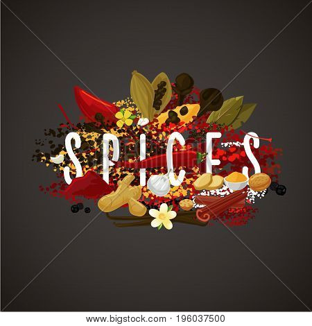 Spices, seasonings and herbs for food market. Isolated banner on dark background