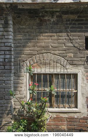 Old Ruin Brick Plaster Wall And Rustic Window Nature Plant Pot