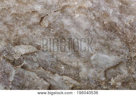 Wet gray quartz close up. Macro shot.