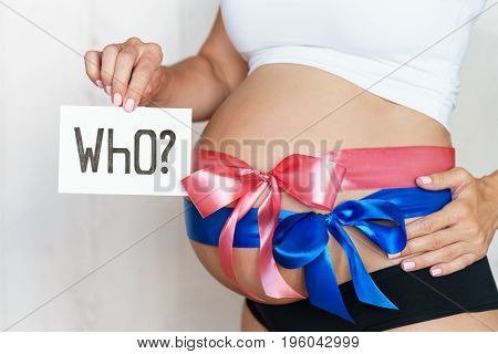 Tummy With Blue And Pink Ribbon Bow Of Pregnant Caucasian Woman Which Is Holding Question Who