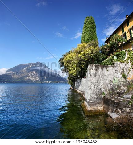 Trees and seawall of Lake Como on a sunny day
