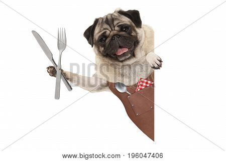 smiling pug dog wearing leather barbecue apron holding up cutlery for eating meal with blank banner isolated on white background