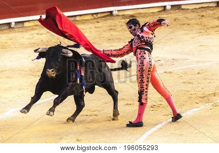 Spanish bullfight. The enraged bull attacks the bullfighter.Spain 2017 07.25.2017. Vinaros Monumental Corrida de toros. Juan Jose Padilla.