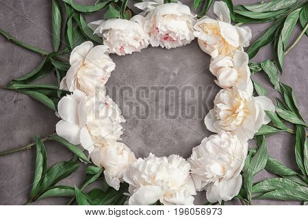 Frame made of beautiful peony flowers on grey background