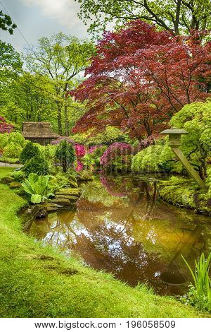 Picturesque Scenery of Japanese Garden with Asian Zen Sculptures on Background in the Hague (Den Haag) in the Netherlands Straight After the Rain. Vertical Image