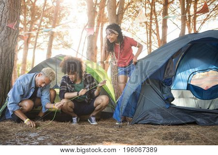 Young friends setting up tent on field at forest
