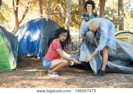 Young friends setting up tent together on field at countryside