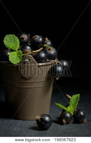 Black currant with mint  leaf isolated