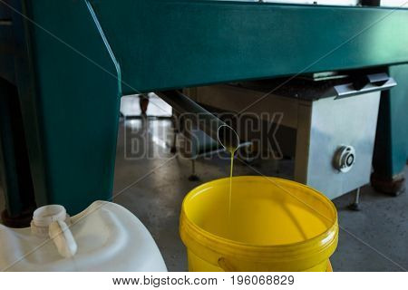 Olive oil being produced from machine in factory