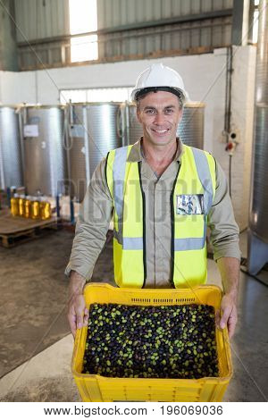 Portrait of happy worker holding fresh olives in crate at factory