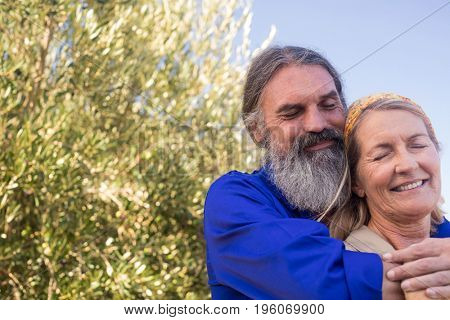Romantic couple standing in olive farm on a sunny day