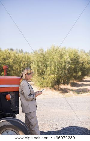 Woman using mobile phone in olive farm on a sunny day