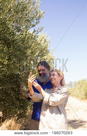 Happy couple examining olive oil in farm on a sunny day