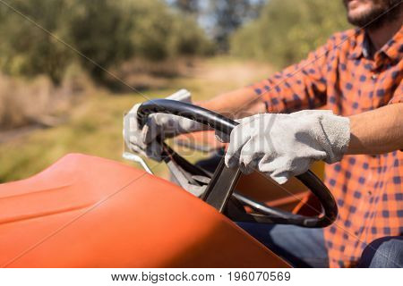 Man driving tractor in olive farm on a sunny day