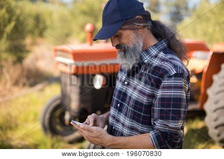 Man using mobile phone in olive farm on a sunny day