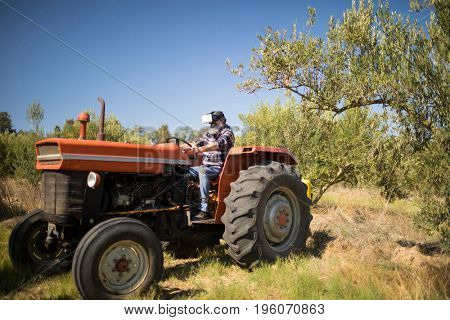 Man using virtual reality headset in olive farm on a sunny day