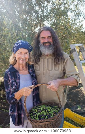 Portrait of happy couple holding basket full of olives in farm