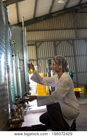 Female technician examining olive oil in factory