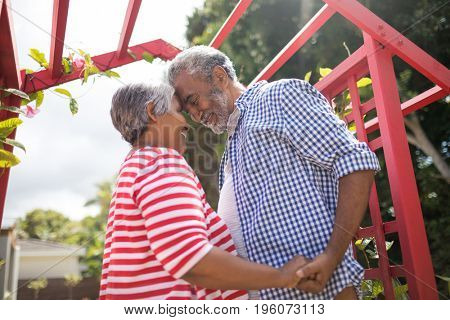 Low angle view of affectionate senior couple standing by metallic structure in yard