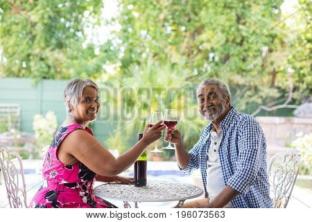 Portrait of senior couple toasting wineglasses while sitting at table in yard