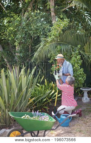 Side view of woman giving flowers to man during plantation in yard