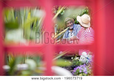 Smiling couple gardening seen through metallic structure in yard