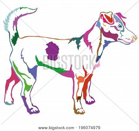 Decorative portrait of standing in profile dog Jack Russell terrier vector isolated illustration in different colors on white background