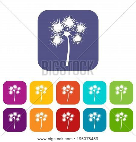 Spiny tropical palm tree icons set vector illustration in flat style in colors red, blue, green, and other