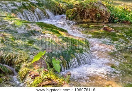 Crystal clear water of Mele Creek - Port Vila, Efate Island, Vanuatu