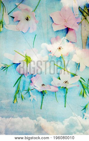 Artistic and natural background with pink flowers