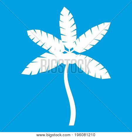 Palm tree with coconuts icon white isolated on blue background vector illustration