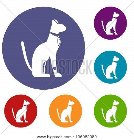 Egyptian cat icons set in flat circle red, blue and green color for web
